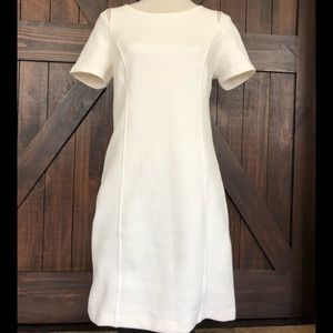 Kensie ivory fitted dress (medium)